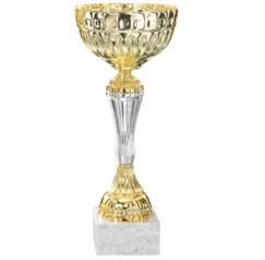 Trophy Albany