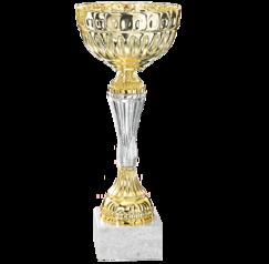 Pokal Albany