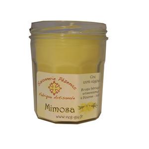 Doftljus Mimosa